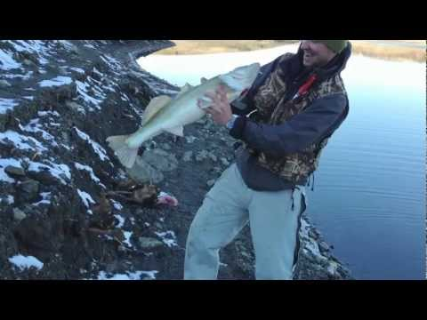 рыбалка в крыму в судаке видео