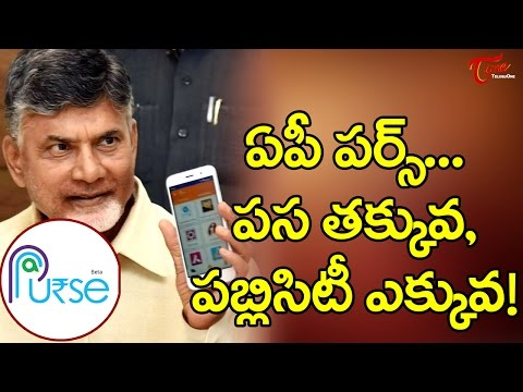 AP PURSE, First e wallet from AP is a complete disaster || #AP PURSE