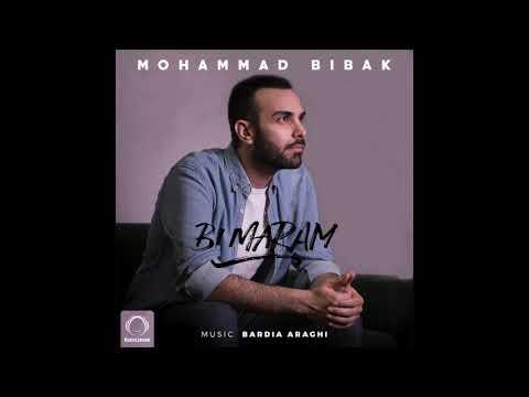 Mohammad Bibak -