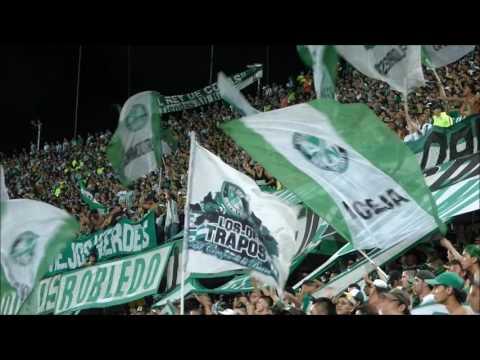 Escenas eliminadas Atlético Nacional 1 - 0 caldas - Los del Sur - Atlético Nacional