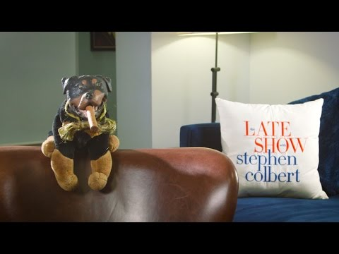 A Moment With Triumph The Insult Comic Dog