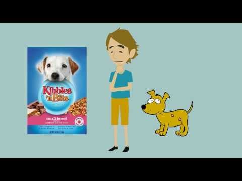 kibbles - More Dog Food Reviews At: http://www.DogFoodInsider.com Full Kibbles 'n Bits Small Breed Mini Bits review here: http://www.dogfoodinsider.com/kibbles-n-bits-...