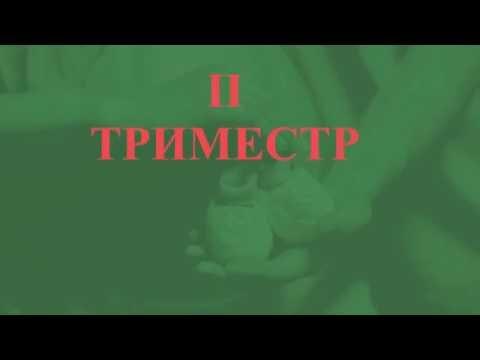 2 ТРИМЕСТР БЕРЕМЕННОСТИ: ОБСЛЕДОВАНИЕ, АНАЛИЗЫ, ПИТАНИЕ