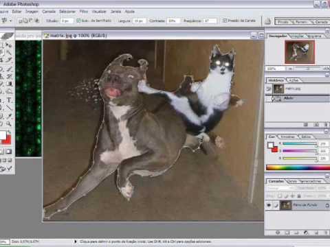 Como trocar a fundo de uma imagem pelo Photoshop