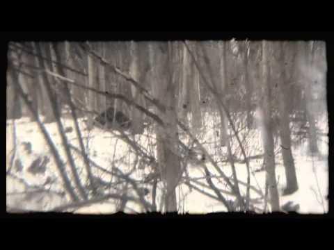 Drip-133 - ViewFound