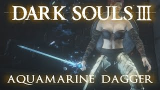 Aquamarine Dagger weapon moveset in Dark Souls 3, including Skill Weapon Arts and sample PvE combat. (STR 5, DEX 14, INT 18)Subscribe for more & live youtube gaming! http://www.youtube.com/user/ZOMBIEHEA...See the stats for this weapon on Fextralife - http://darksouls3.wiki.fextralife.com/Aquamarine+Dagger___________________________________Weapon Vids: (A through G)Anri's Straight Sword - https://youtu.be/3PUgiPOfhjQAquamarine Dagger - https://youtu.be/K67JxI1TTdAArstor's Spear - https://youtu.be/7Iugdp0XBcMAstora Greatsword - https://youtu.be/ZyTWRQ0sPowBarbed Straight Sword - https://youtu.be/JdwxFhkcN9YBastard Sword - https://youtu.be/vtaTJWqzYwsBattle Axe - https://youtu.be/eDxuTE10TjM(Berserker) Black Blade - https://youtu.be/0-vhjjrqb_YBlack Knight Glaive - https://youtu.be/W7XYohZLxaMBlack Knight Greataxe - https://youtu.be/axyBpN22x0IBlack Knight Greatsword - https://youtu.be/M-QwXKkIVW4Black Knight Sword - https://youtu.be/D2uS42qX6bUBlacksmith Hammer - https://youtu.be/ulcXlVnBDpcBloodlust - https://youtu.be/u0Iz0nJZHucBrigand Axe - https://youtu.be/IW7rBAw71RsBrigand Twindaggers - https://youtu.be/PYYuXX1qIKcBroadsword - https://youtu.be/BZj6WDYbmG8Broken Short Sword - https://youtu.be/mCQlk-YAxqUButcher Knife - https://youtu.be/h4V1tLK4QeICaestus - https://youtu.be/2zDMj0T8Gh4Carthus Curved Greatsword - https://youtu.be/yaTeSU4OfpECarthus Shotel - https://youtu.be/Nn-O8ZqKkowCathedral Knight Greatsword - https://youtu.be/g1uXSm_gL1UChaos Blade - https://youtu.be/XHuNx8gv8b8Claw - https://youtu.be/V0alZ6Z_8m0Claymore - https://youtu.be/GBXHboymFsIClub - https://youtu.be/veCD190uVQ0Crescent Axe - https://youtu.be/gq69S8aWoZsCrescent Moon Sword - https://youtu.be/q6X1pIWikVwCrow Quills - https://youtu.be/3r_FY142R3kCrow Talons - https://youtu.be/NIBqfalOyP4Crystal Sage's Rapier - https://youtu.be/HeAlV_GXUJMDagger - https://youtu.be/yXvfWM6t4bgDancer's Enchanted Swords - https://youtu.be/wRAasxVp76cDarkdrift - https://youtu.be/vRMS0UP0qKYDark Hand - https://youtu.be/vRMS0UP0qKY?t=1m25sDark Sword - https://youtu.be/AxrmwJWlwZgDemon's Fist - https://youtu.be/WcfI43bTZCMDemon's Greataxe - https://youtu.be/SD6AmmwXD0IDemon's Scar - https://youtu.be/lbgTCBdYJsEDragonslayer Greataxe - https://youtu.be/gZwEzBqaH84Dragonslayer Spear - https://youtu.be/vsCCsy3Gx34Dragonslayer Swordspear - https://youtu.be/L4Ryd6RAJfIDragonslayer's Axe - https://youtu.be/MPKlxeQmmEgDragon Tooth - https://youtu.be/oFLU4yUvdJEDrakeblood Greatsword - https://youtu.be/4iphEaIUZDMDrang Hammers - https://youtu.be/23kV0tnvaO0Drang Twinspears - https://youtu.be/enRrZmyyJPYEarth Seeker - https://youtu.be/qrcFNjwesd4Eleonora - https://youtu.be/RV3MJxPGC2cEstoc - https://youtu.be/zzedIMwJ0ksExecutioner's Greatsword - https://youtu.be/AMah0wx5PKMExile Greatsword - https://youtu.be/-SPZvhN1-_YFalchion - https://youtu.be/TAXYL13Bio0Farron Greatsword - https://youtu.be/FUOIKfqkijYFirelink Greatsword - https://youtu.be/5YiVESF4zoMFlamberge - https://youtu.be/x9M2uos3Hg0Follower Saber - https://youtu.be/BY4iV9wjSl0Follower Torch - https://youtu.be/vNV4o64JQjwFour-pronged Plow - https://youtu.be/MRdGfMDFm5YFriede's Great Scythe - https://youtu.be/HV-nIZ9dysIFume Ultra Greatsword - https://youtu.be/BA5TOh1OwtMGargoyle Flame Hammer - https://youtu.be/KDPqlVLIXCAGargoyle Flame Spear - https://youtu.be/gNJ9LBQ0bAYGiant Door Shield - https://youtu.be/12OmAKoHY3QGlaive - https://youtu.be/eR-YXPQ3ALYGotthard Twinswords - https://youtu.be/BBOiTla7U6oGreataxe - https://youtu.be/GBiQoxoRBWMGreat Club - https://youtu.be/BIOSESvEU_sGreat Corvian Scythe - https://youtu.be/mBs6B_IDbwYGreatlance - https://youtu.be/3pgvHiMJPJAGreat Mace - https://youtu.be/ZMTdt3y-Dp8Great Machete - https://youtu.be/1TXJ3s8hnYIGreat Scythe - https://youtu.beV3kdqG-6VqgGreatsword - https://youtu.be/BOofzxLNI_cGreatsword of Judgement - https://youtu.be/DqvlSadpWWkGreat Wooden Hammer - https://youtu.be/XEpASVwLc_IGundyr's Halberd - https://youtu.be/TSi0uKpUWJ8