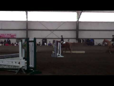 Sarah Lummis' win in Advanced Walk/Trot/Canter - 1/25/14