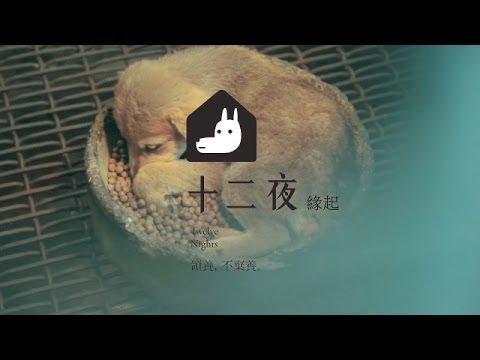 【十二夜】Twelve Nights 電影緣起篇HD_11月29日上映
