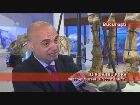 """Muzeul """"Antipa"""", beneficiar în premieră al unei noi tehnologii anti-cutremur"""