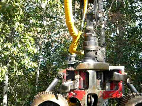 The Taimi Swivel in action on a Logmax Head (Tiger Carrier)