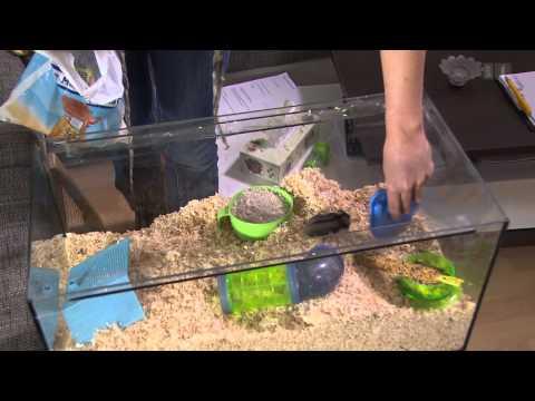 Digitec-Ärger. Beschiss mit Energielabel. Kleintier-Einstreu-Test - Kassensturz vom 05. Mai 2015