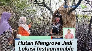 Hutan Mangrove Jadi Lokasi Instagramable Baru di Aceh Singkil