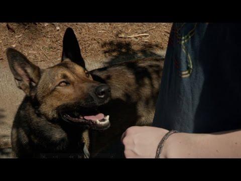 Max Max (2015) (TV Spot 3)