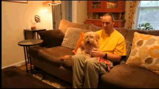 Shaggy Patty and Eldad on tv Jan 25 2013