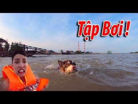 NTN  - 4K Gấu Alaska Đi Bơi Suýt Chết Đuối ( Alaska swimming lessons ) - Thời lượng: 15 phút.