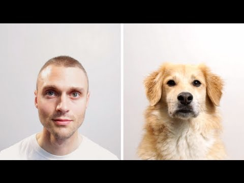 Ever Wonder What Life Is Like for Your Dog?! Watch this...