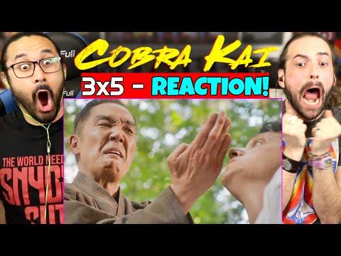 """COBRA KAI 3x5 - REACTION!! """"Miyagi-Do"""" (Season 3 Episode 5)"""