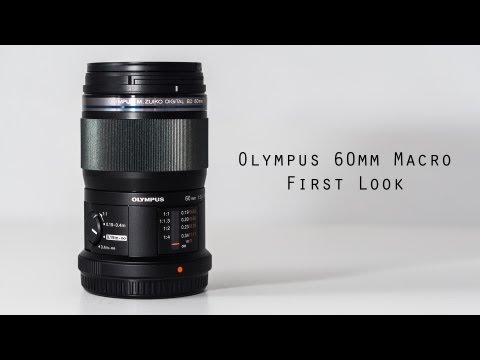 Olympus 60mm 2.8 Macro Lens for M43 Review