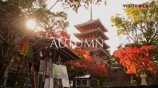 Kochi Japan  city images : The blessings of nature - autumn PV- VISIT KOCHI JAPAN