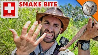 Snake Bite First-Aid by Brave Wilderness