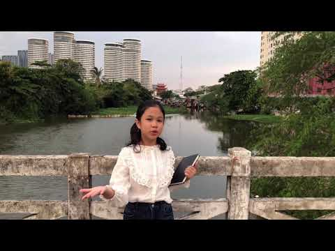 What should I do to improve and develop my country's education system? -   TTS CUP 2021/ 2nd Round/ (HH) TRAN NGOC KHANH NHI