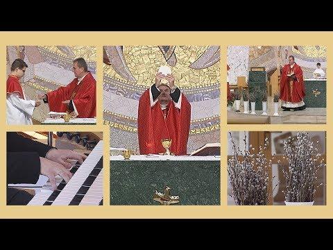 2020-04-05 2020-04-05 Vasárnapi szentmise a Gazdagréti Szent Angyalok Plébánián (Virágvasárnap)