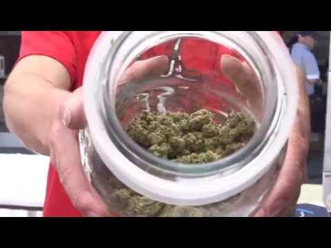 2014 HIGH TIMES Seattle US Cannabis Cup: Sunday Highlights