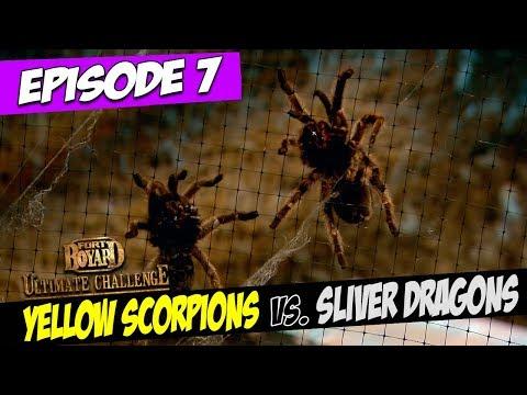 Yellow Scorpions Vs. Sliver Dragons   Series 5, Episode 7   Fort Boyard: Ultimate Challenge