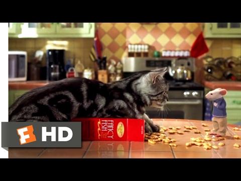 Stuart Little (1999) - A Mouse With a Pet Cat Scene (3/10)   Movieclips