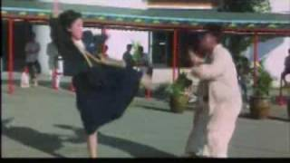 A short but insane fight scene featuring Yuen Biao and a badass girl! From the great License To Steal.