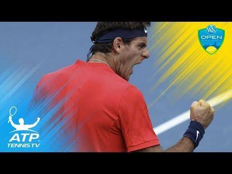 Juan Martin del Potro best shots in win vs Tomas Berdych | Cincinnati 2017 Day 2 Highlights