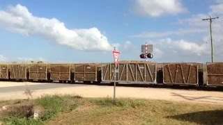 Ingham Australia  City pictures : Sugar Cane Trains Australia: sugar cane trains of Ingham