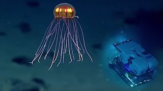 Video 5 Scariest Creatures Caught At The Bottom of the Mariana Trench! MP3, 3GP, MP4, WEBM, AVI, FLV Desember 2018