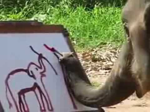 An Elephant Paints a Self-Portrait