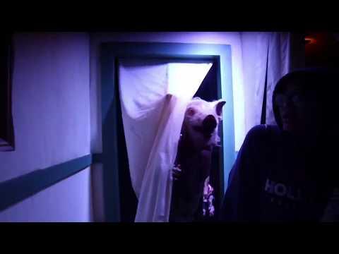 American Horror Story: Roanoke - Halloween Horror Nights Hollywood 2017