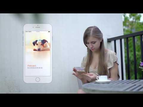 Distributore automatico cibo cane gatto con WIFI App telecamera e audio