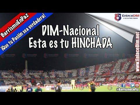 CLÁSICO: DIM-Nacional ¡LA HINCHADA DEL EQUIPO DEL PUEBLO! #EnlaceDIM #BarrismoEnPaz - Rexixtenxia Norte - Independiente Medellín