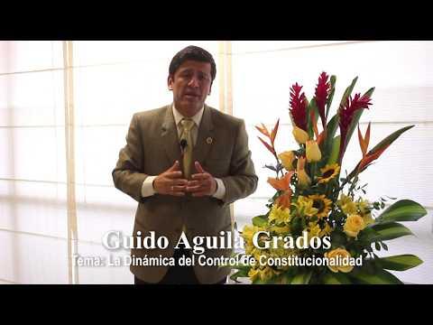 Programa 27 - La Dinámica del Control de Constitucionalidad - Tribuna Constitucional - Guido Aguila