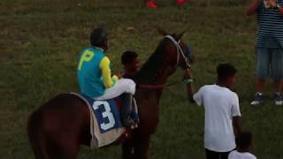 Horse Race Peoples Stadium May 20,2018 Race 8