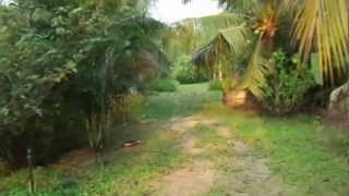 Land For Sale - Huay Yai, Pattaya, Thailand