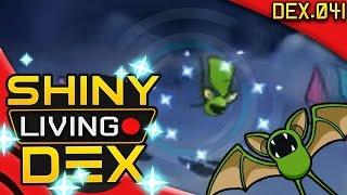 SHINY ZUBAT REACTION Live! Quest For Shiny Living Dex #041 | Pokemon ORAS by aDrive