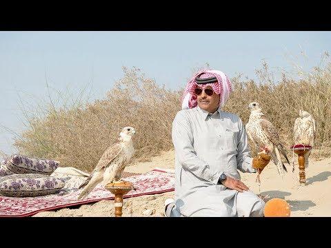 مقناص الشيخ عبدالرحمن بن جاسم بن عبدالعزيز بن جاسم ال ثاني 2019