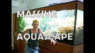 MASSIVE 500g Planted Aquarium in Mexico by Rachel O'Leary