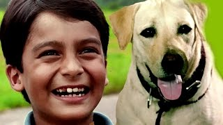 Video Bollywood Full Movies – Kabhi Pass Kabhi Fail - कभी पास कभी फैल -New Hindi Dubbed Movies - Kids Film MP3, 3GP, MP4, WEBM, AVI, FLV Juni 2018