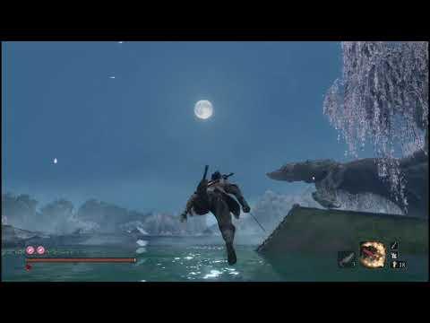 隻狼奔月???? 怎麼游一游,就飛起來了