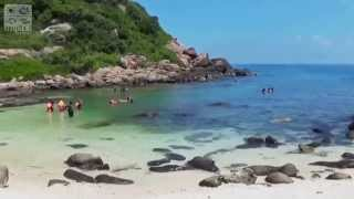 Trincomalee Sri Lanka  city images : Jungle Beach Resort – Trincomalee