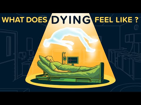 What Does DYING Feel Like?