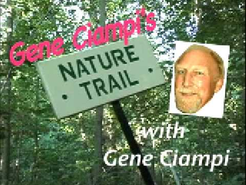 Gene Ciampi's Nature Trail (видео)