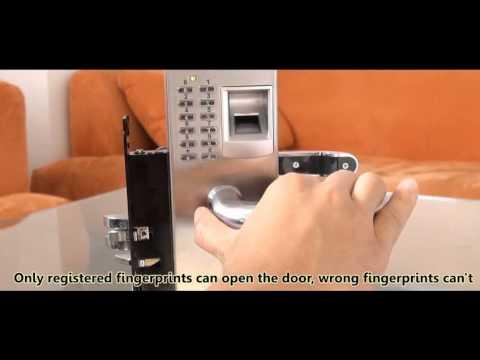 Biometric Fingerprint Door Lock by Online Leo Store