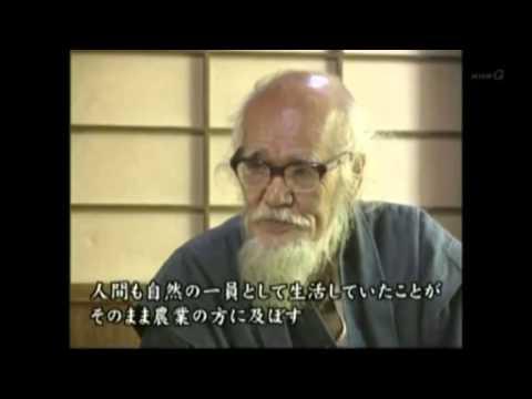 masanobu fukuoka: la storia dell'agricoltura naturale
